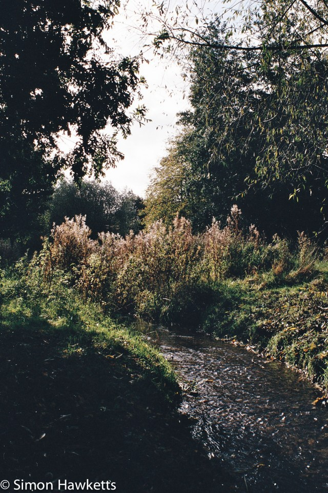 Minolta 7000 35mm slr sample picture - Stream