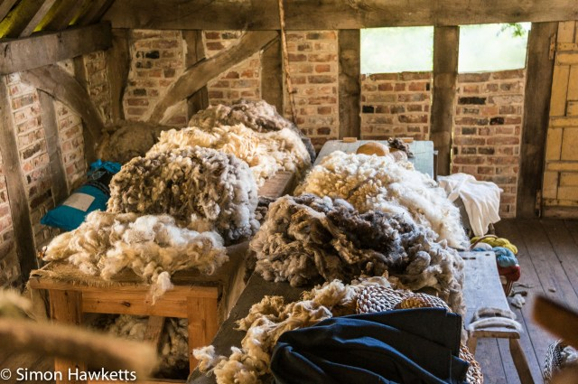 Kentwell Hall Tudor day pictures - Fleeces waiting