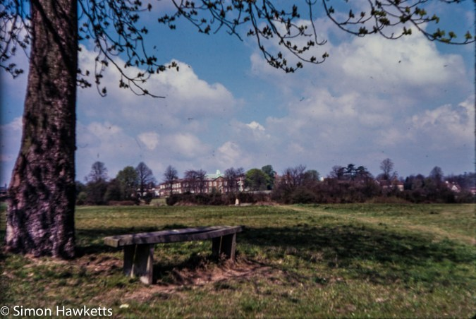 Views around London c1980 on colour slide film - A tree and a bench