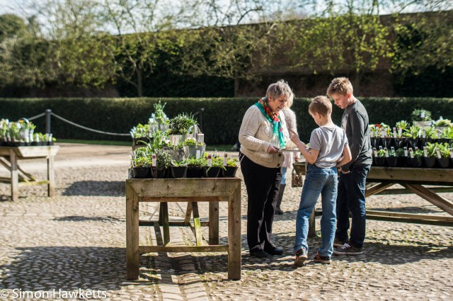 Beningborough Hall pictures - Selling plants in the shop