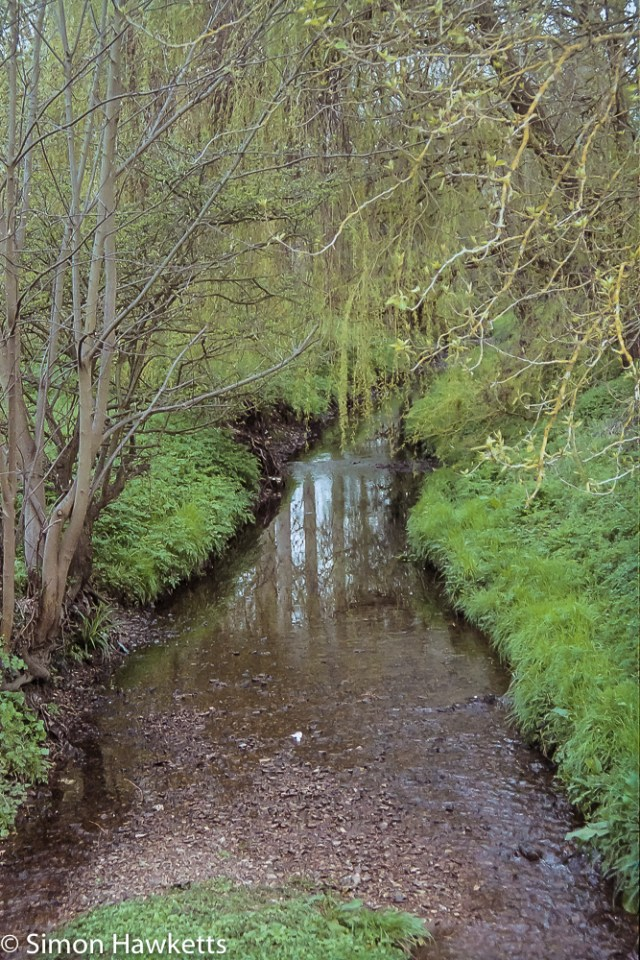 Pentax MZ-3 sample photographs - The Stevenage brook which runs close to our house