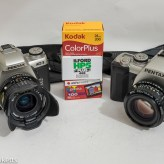 Pentax MZ-3 and Pentax MZ-M with various 35mm films