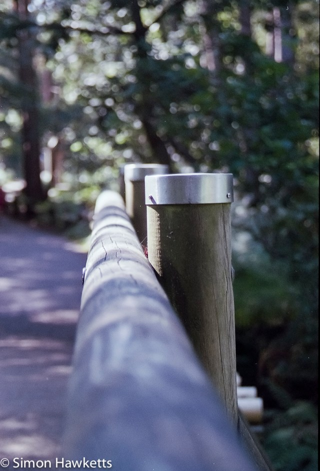 Elveden Forest Centerparcs on film - bridge post