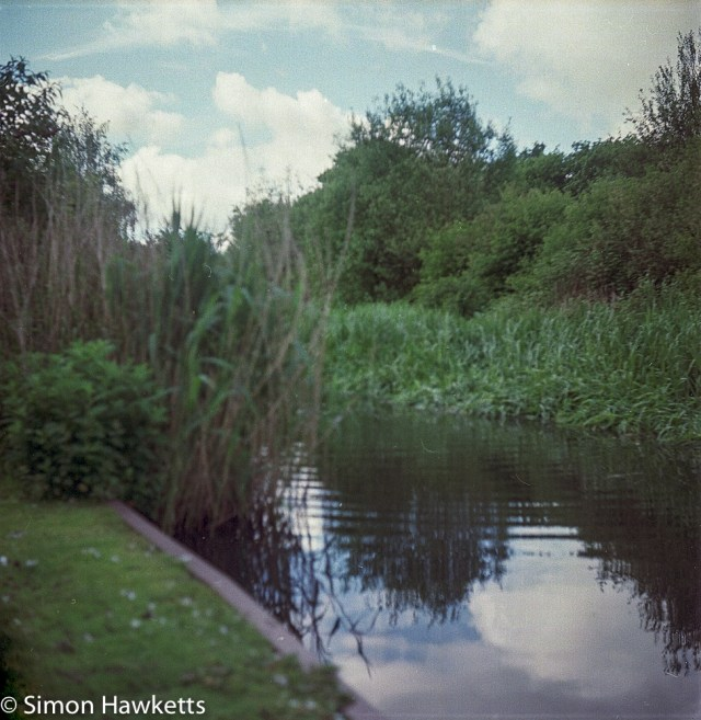 Ciro-Flex TLR sample pictures - The duck pond