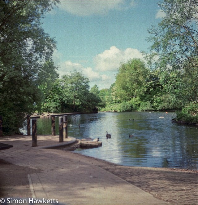 Ciro-Flex TLR sample pictures - The wildlife pond in Fairlands