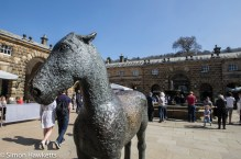 Chatsworth house pictures - horse in the courtyard