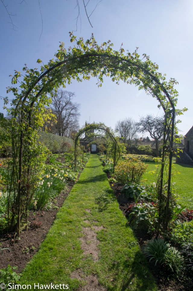Eyam Hall Pictures - Arches in the garden