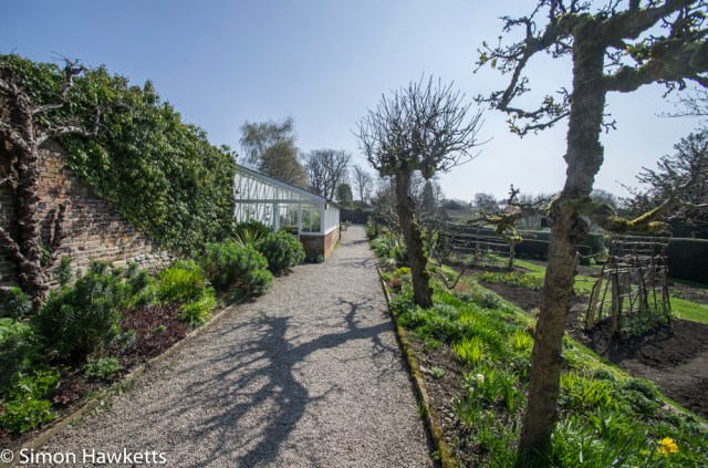 Eyam Hall Pictures - The kitchen garden