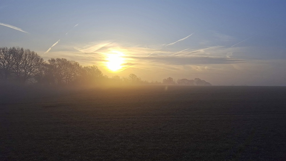 Misty Photos - Sunrise