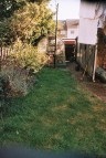 Photos from film found in old cameras - a lawn in a back garden