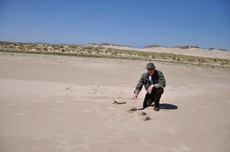 Dune ranger Villy Hansen explains Rabjerg Mile's geological origins [Simon Hooper]