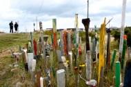 Dungeness paintbrush garden