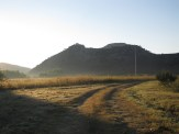 Morning On a Meadow In Santa Isabel