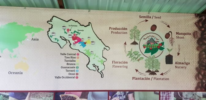 Coffee Map and Coffee lifecycle