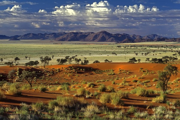 The picture shows you the desert in Namibia. Gambling in Namibia is not regulated.
