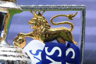 A close-up of the lion on the Barclays Premier League trophy