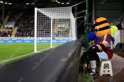 Burnley mascot Bertie Bee takes a seat pitchside as his team play Watford at Turf Moor