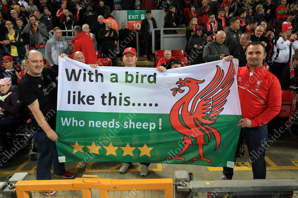 Welsh Liverpool fans hold up a banner referring to sheep and the Liver Bird