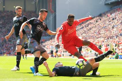 Oriol Romeu of Southampton tackles Divock Origi of Liverpool