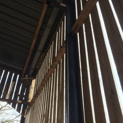 Slatted calf shed from inside