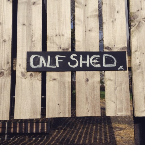 """Calf Shed"""