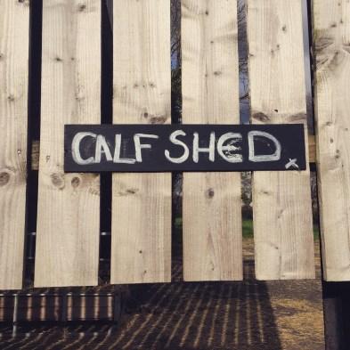 """Calf Shed"""