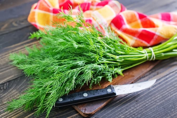 Fresh dill on wood cutting board with knife and colorful towel in the background