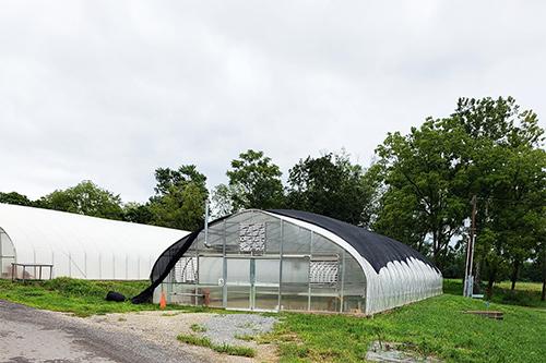 Profeta Farms empty greenhouse