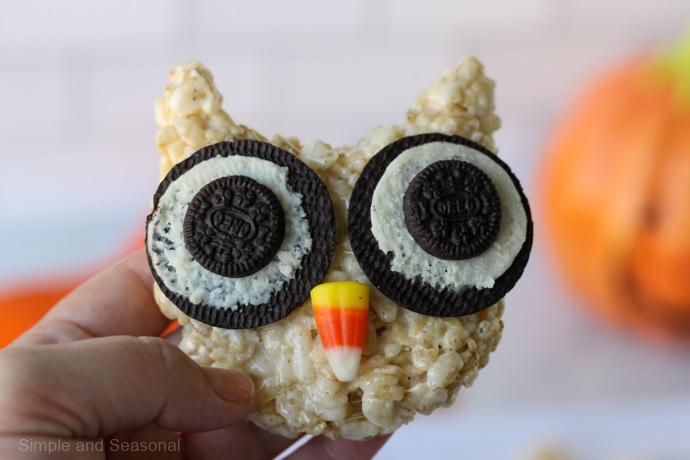 closeup of owl treat