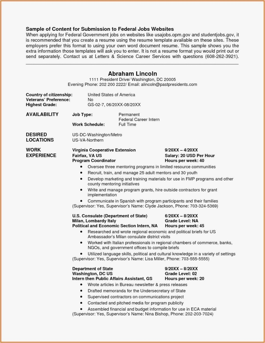 federal resume template doc
