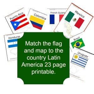 Latin america flag match