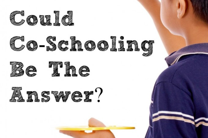 Could Co-Schooling be the Answer?