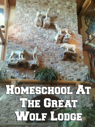 Homeschool on Vacation: Great Wolf Lodge