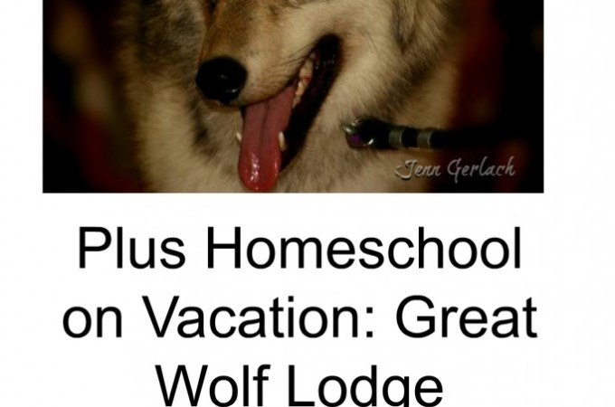 Homeschool Unit Wolves