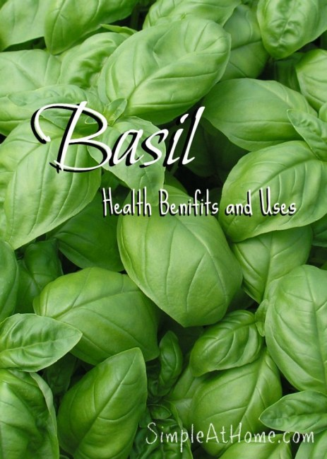 How can Basil benefit your family?