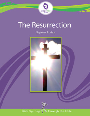 Resurrection Grapevine Studies Review
