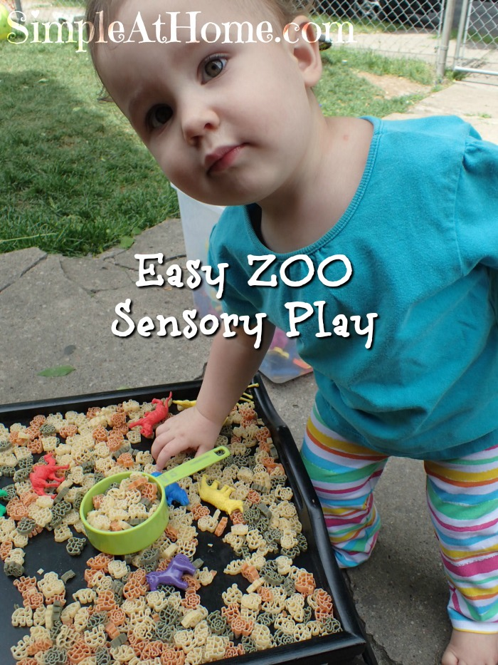 Easy zoo sensory play and ideas