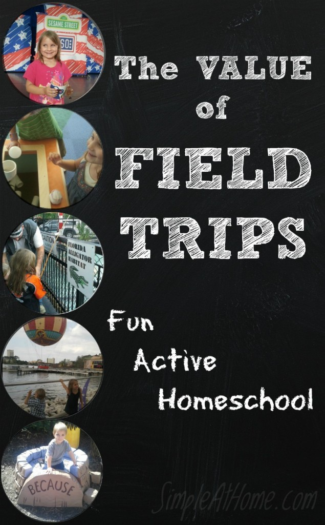 looking to put the fun back into your homeschool? How about a field trip.