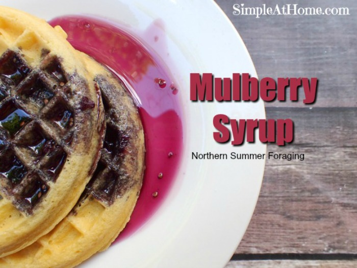 Mulberry syrup recipe