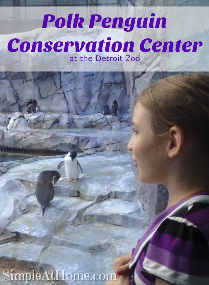 Visit the Polk Penguin Conservation Center