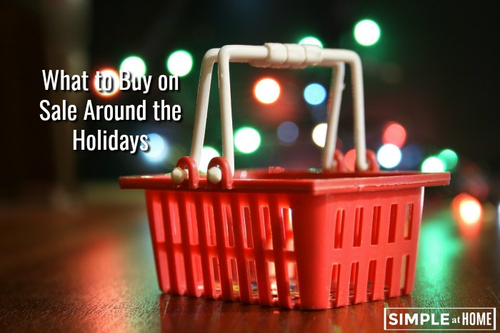 What should you buy on sale during the holidays?