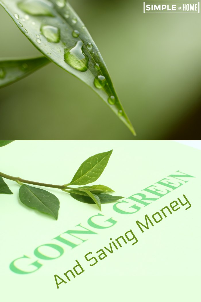 Going green and saving money