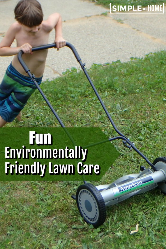 Environmentally friendly lawn care with an old fashioned reel mower form American Lawn Mower co