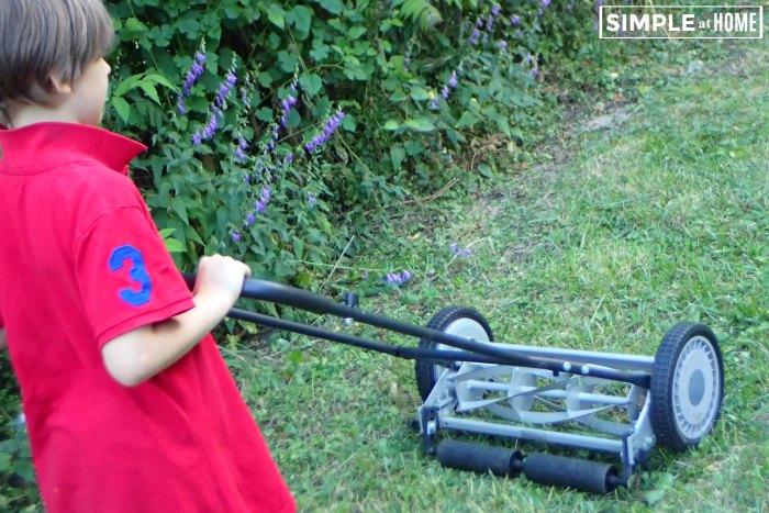 American Lawnmower