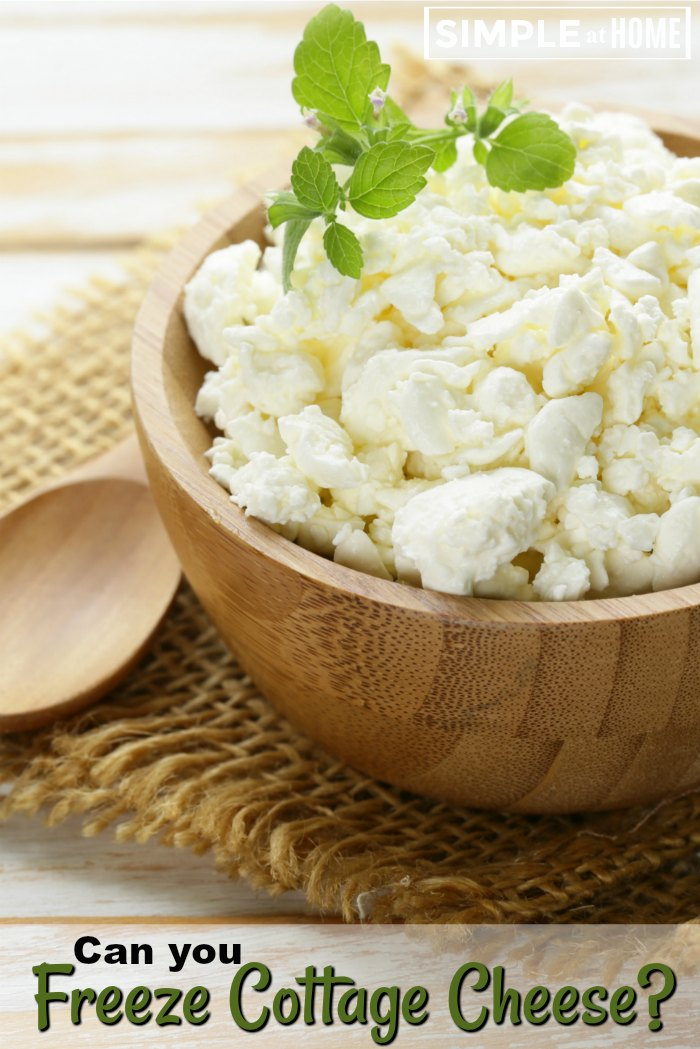 Can You Freeze Cottage Cheese • Simple At Home
