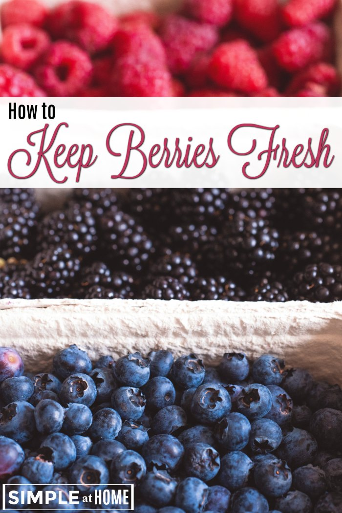 Sick of berries going bad? These tips can help.