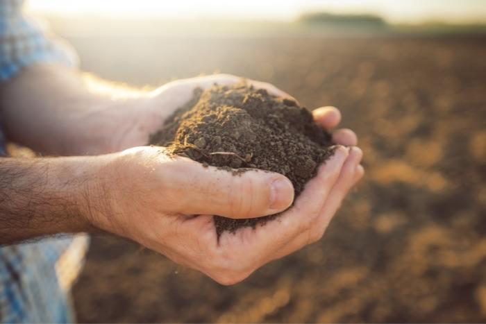 howto make the best garden soil