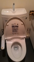 automatic toilet bowl