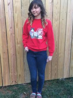 Sweater (thrift shop)
