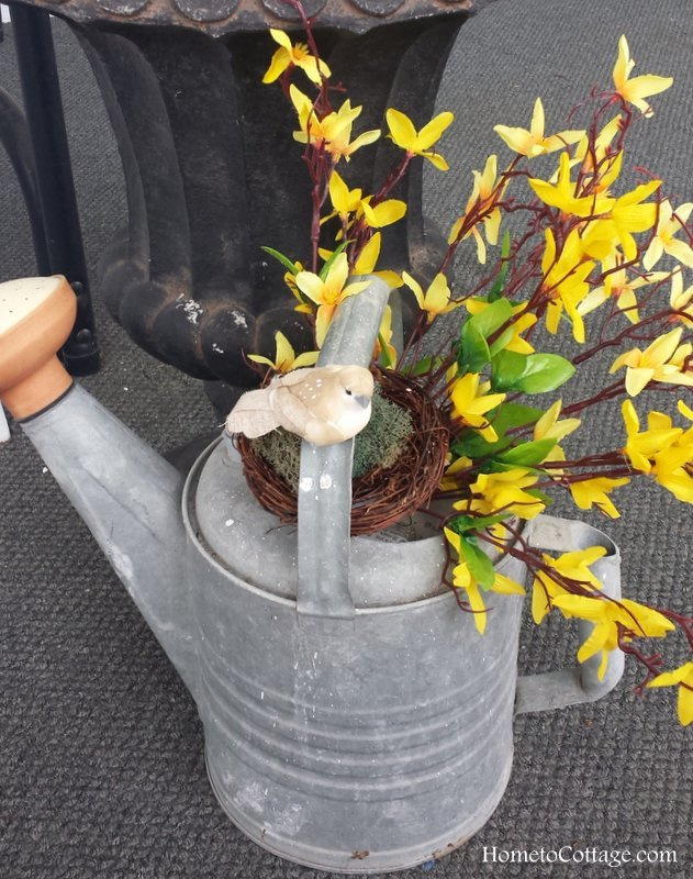 HometoCottage.com bird, nest and forsythias in vintage watering can